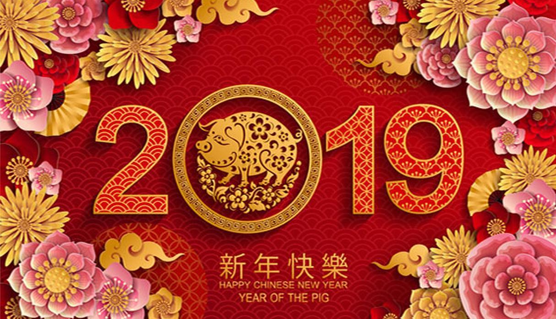 Calendario Chino.Con Buenas Predicciones Se Inicia El Ano Del Cerdo Del