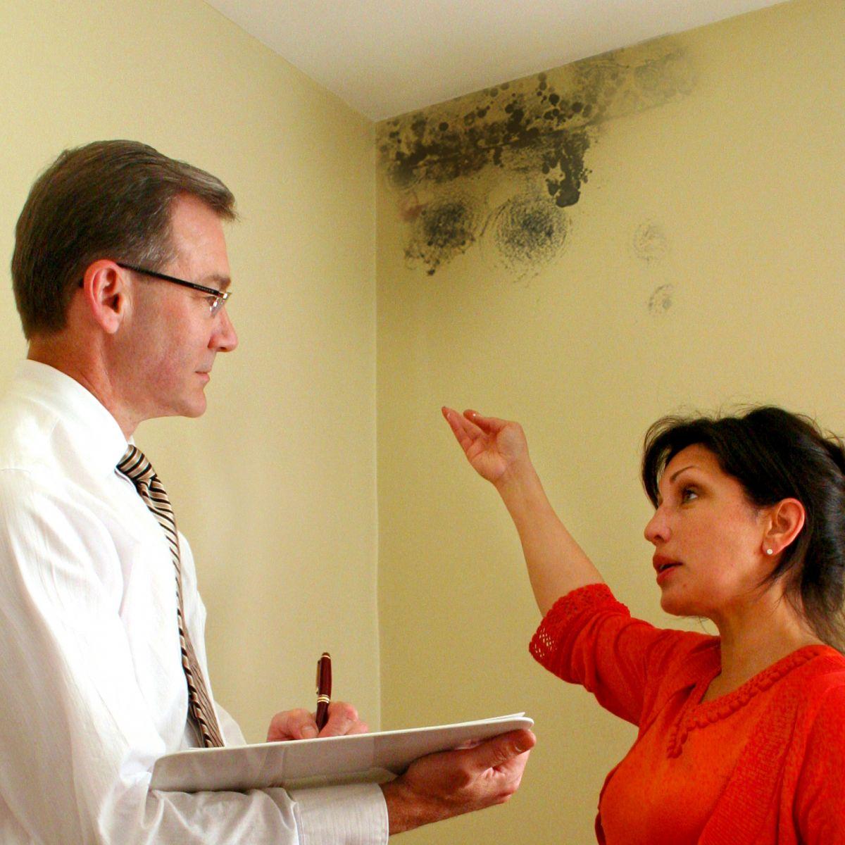 La humedad en casa grave problema que se debe detener a tiempo la portada canad - Humedad en casa ...